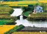 温州2017赏花攻略图 十里桃花 万亩油菜花……你想和谁一起看