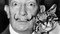 杨朔:喵星人来袭 那些在当代艺术史中赫赫有名的猫