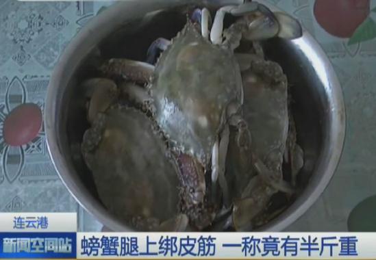螃蟹/图闻天下  查看图集
