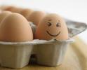7月底以来重回4元时代:鸡蛋价格上涨空间有限