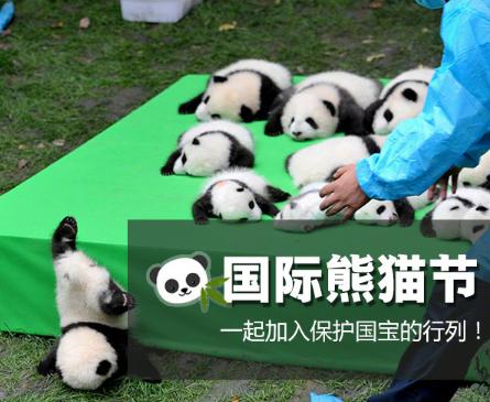 熊猫的粑粑是什么味?