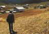 香格里拉陨石争夺战:每克数万元