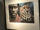 湖北省博物馆在接到种族歧视投诉后撤下作品