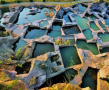 神秘的千洞之岛——蛇蟠岛