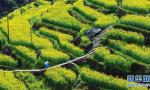 衢州13个最好的景区12月份全免费!