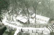 又是一年冬来到 河南自驾赏雪市场逐渐火爆