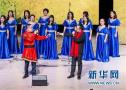 瑞典中国学生学者举办春节联欢会