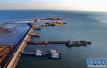 1月,河北省港口集装箱吞吐量同比增长22.6%
