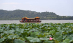 杭州春季旅遊旺季來了 週末出門攻略看這裡
