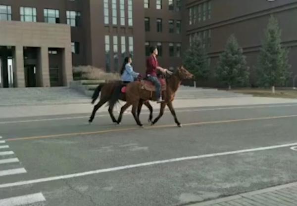 内蒙古大学情侣校园骑马 网友:骑马上学被坐实
