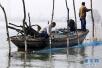 江苏泗洪:拆围网 保水质