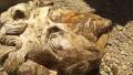 埃及考古队近日在埃及南部阿斯旺附近发掘出古罗马皇帝