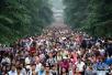 小长假,南京人去了711个目的地城市