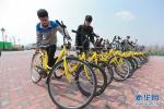 深圳共享单车考核摩拜ofo刚及格 维修和停放问题最大