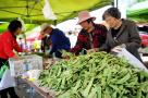 4月全国居民消费价格水平同比上涨1.8%