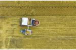 青岛第3次农业普查数据出炉 144.9万人从事第一产业