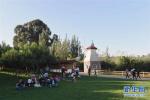 城市園林景觀不能一味求大 南京將嚴控大廣場大草坪