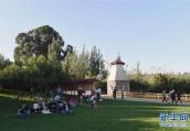 城市园林景观不能一味求大 南京将严控大广场大草坪