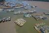"""台风""""玛莉亚""""致浙江沿海最大风力达15级 温州等地有暴雨"""