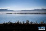 香河渠口镇持续发力水域环境治理