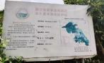 浙江磐安被指旅游开发侵占基本农田,处罚流于形式