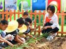 唐山乐亭:农耕教育进校园