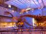 国际博物馆日催热旅游 让文化遗产