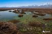 祁连山下有个国家级自然保护区,还养育了敦煌!