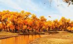 秋天最美的3个地方