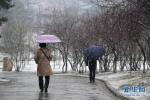 """雨夹雪! 时隔145天北京终于迎来""""有效降水"""""""