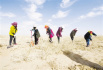 生态保护加综合治理增绿沙漠