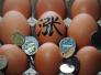 """沈阳8月鸡蛋价格环比涨3成 9月""""火箭蛋""""或再蹿高"""