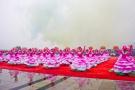 河洛文化旅游节即将开幕 八项活动等你来玩