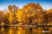 国庆来了 来看看甘肃的秋天是什么样子的呢?