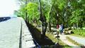 """南京城墙修缮有了""""标准"""" 技术导则近日出炉"""