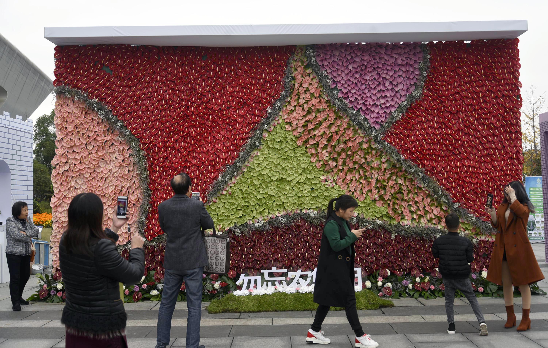 杭州举办第六届都市花卉节