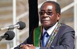 津巴布韦总统穆加贝被解除党内职务