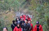 天台南屏:巧借红枫美景 撬动全域旅游发展