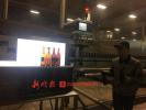 1小时5万瓶啤酒眼中过 90后黑龙江小伙春节坚守生产线