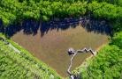 航拍清明湿地公园