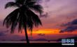 多位专家解读:为何选择海南建设自贸区和自贸港?