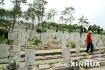 山东:16个设区市实现基本殡葬免费