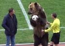 战斗民族请熊来开球