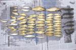 禁渔期内苍南两男子结伴电鱼被查获,抱侥幸心理以为不会被抓