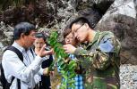 """中科院点赞!温州野生植物首部权威""""家谱""""来了"""