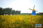中国与中东欧国家期待农业合作升级