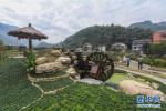 成都:风景名胜区核心区不能经营农家乐