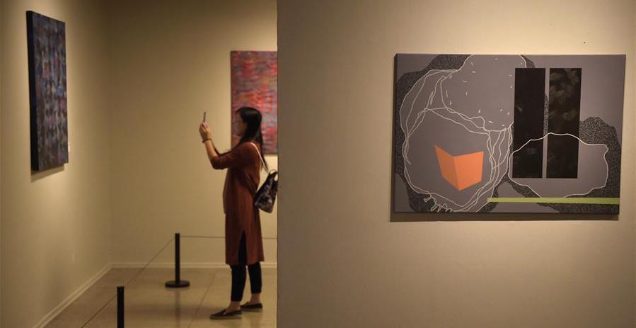 匈牙利当代艺术展亮相国美 感受匈牙利当代艺术独特风貌