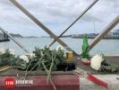 看哭!泰国沉船遇难者头七,中国游客家属码头祭奠哭喊:记得回家!