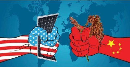 世贸组织肯定中国经济发展与贸易政策